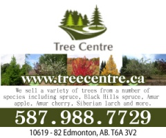 The Tree Centre