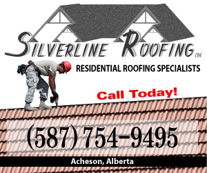 Silver Line Roofing